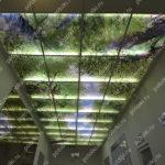 Php_128_2 Потолок витражный фотопечать