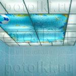 Php_22_1 Потолок витражный фотопечать