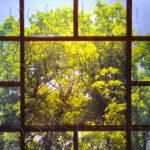 Php_36_1 Потолок витражный фотопечать