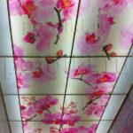 Php_45_2 Потолок витражный фотопечать