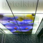 Php_46_2 Потолок витражный фотопечать