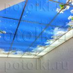 Php_50_1 Потолок витражный фотопечать