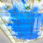 Php_50_2 Потолок витражный фотопечать
