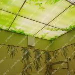 Php_132_2 Потолок витражный фотопечать