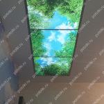 Php_138_3 Потолок витражный фотопечать