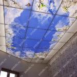 Php_144_1 Потолок витражный фотопечать