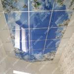 Php_144_4 Потолок витражный фотопечать