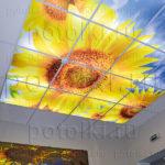 Php_14_1 Потолок витражный фотопечать