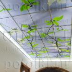 Php_21_1 Потолок витражный фотопечать