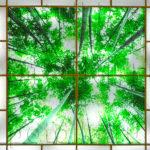 Php_27_2 Потолок витражный фотопечать