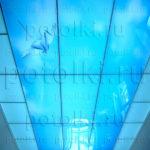 Php_44_1 Потолок витражный фотопечать