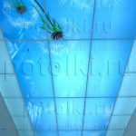 Php_44_2 Потолок витражный фотопечать