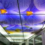 Php_46_1 Потолок витражный фотопечать