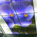 Php_46_3 Потолок витражный фотопечать